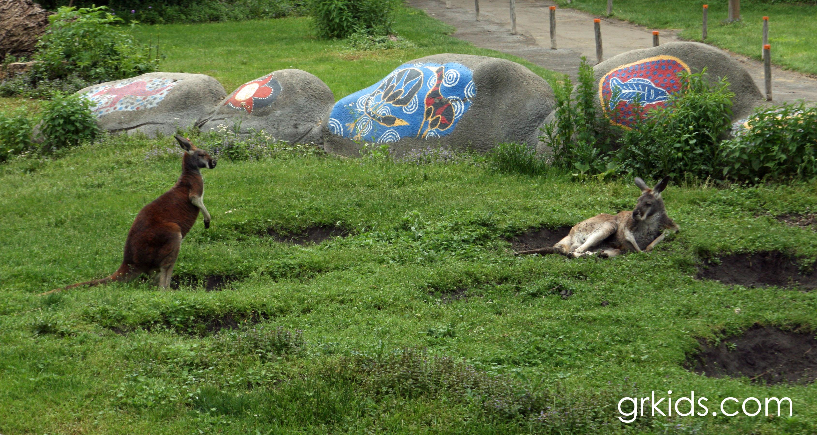 Why I Love the Detroit Zoo grkidscom