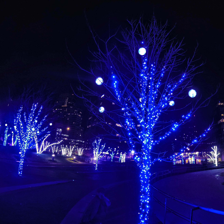 Grand Junction Christmas Lights 2019 Christmas Light Shows and Light Displays   The Big List!   grkids.com