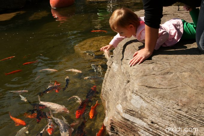 Meijer Gardens girl and fish pond