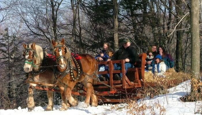 Rainbow Ranch Sleigh Rides West Michigan 1