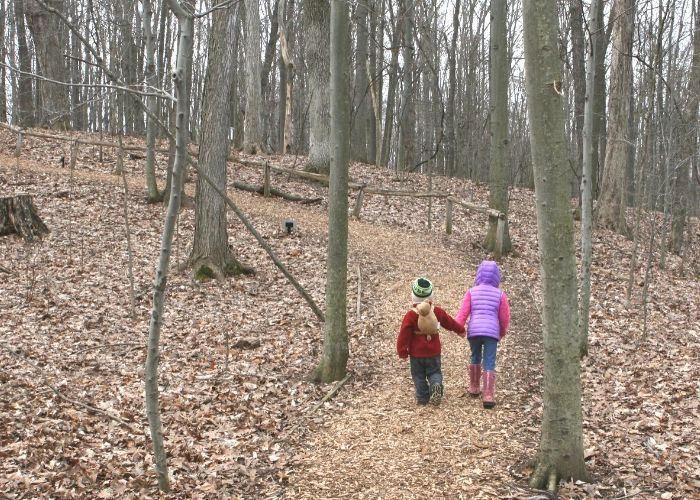 Blandford Nature Center Trails