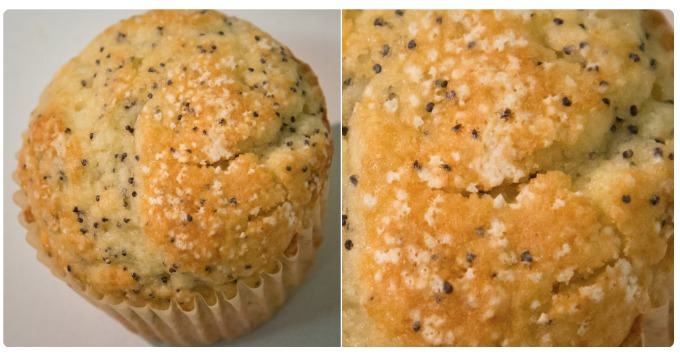 CDC Ticks on a Muffin