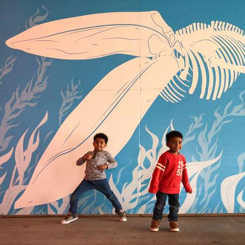 GRPM Whale Mural Brooks