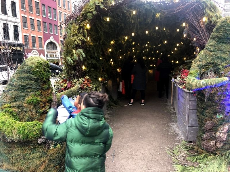 Winter in Detroit Holiday Pine Tunnel