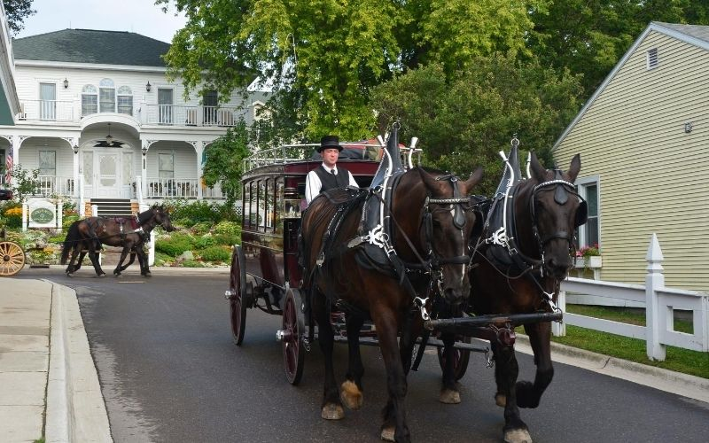 mackinac island horse carriage