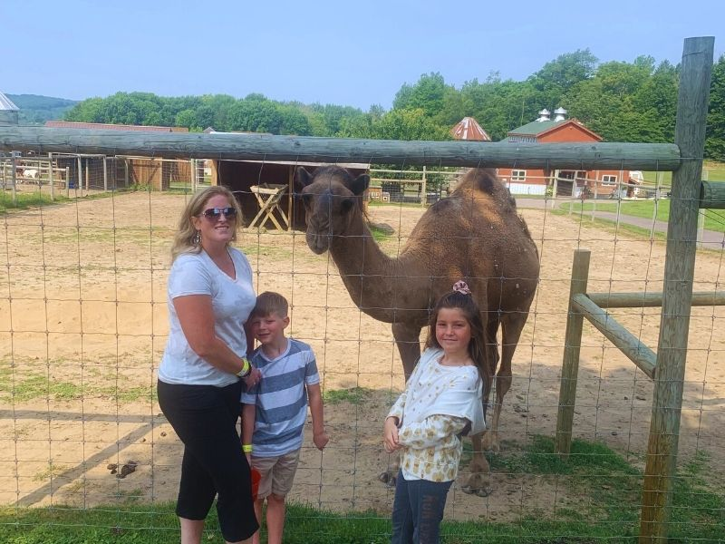 Lewis Farms petting zoo Jeffrey the Camel