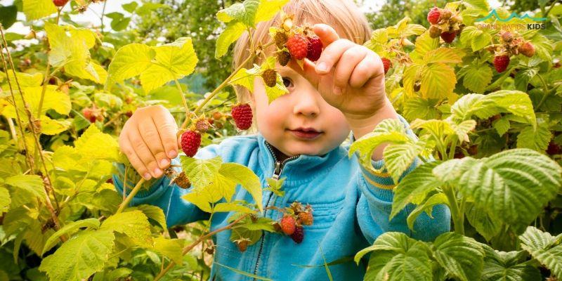 raspberry picking near me grand rapids michigan