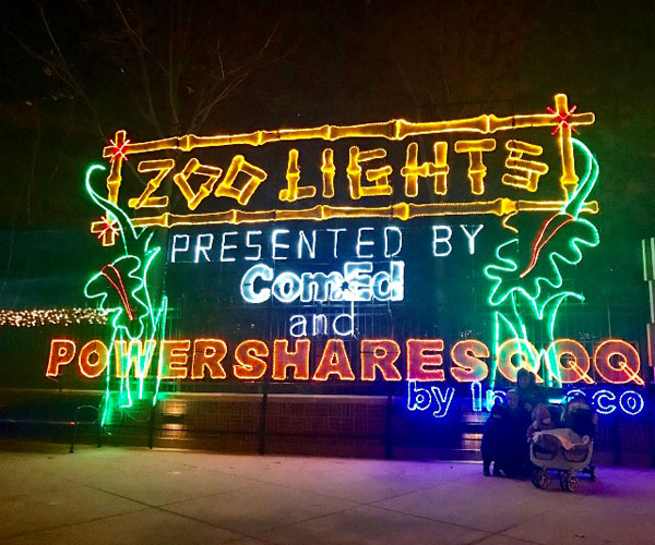 Zoo Lights sign lit up at night in Chicago