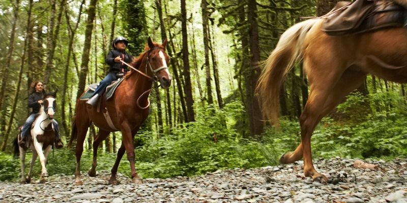 things to do_ horseback riding