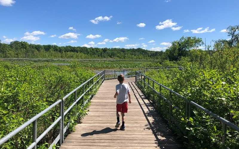 Reeds Lake Trails boardwalk