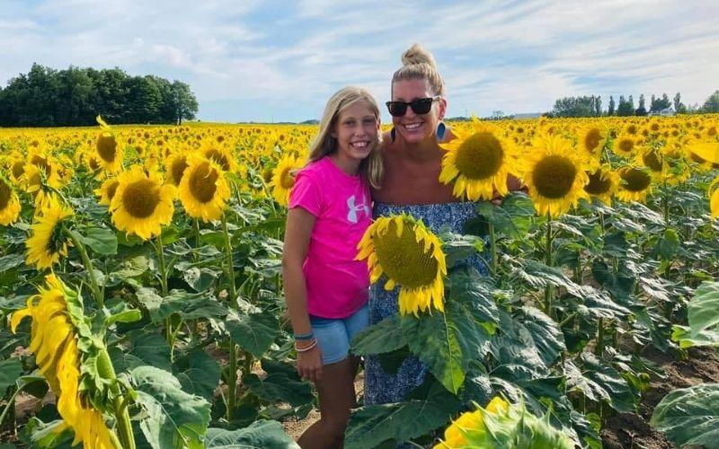 lisa hovinga sunflower fields west michigan