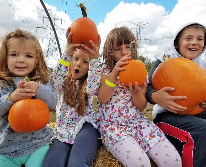 kids at pumpkin patch at Post Family Farm