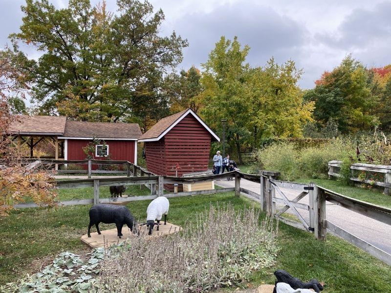 farm garden giant pumpkin meijer gardens in fall 2