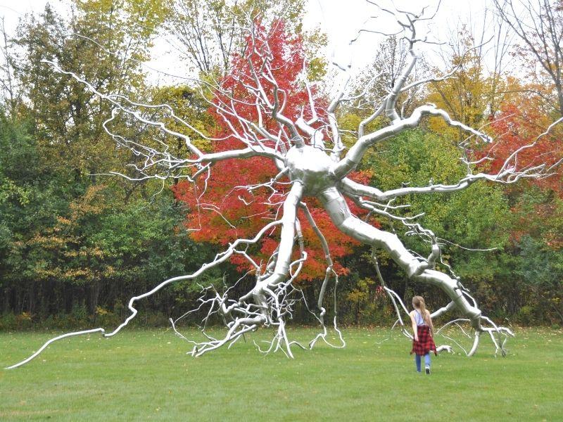 sculpture park frederik meijer gardens in fall