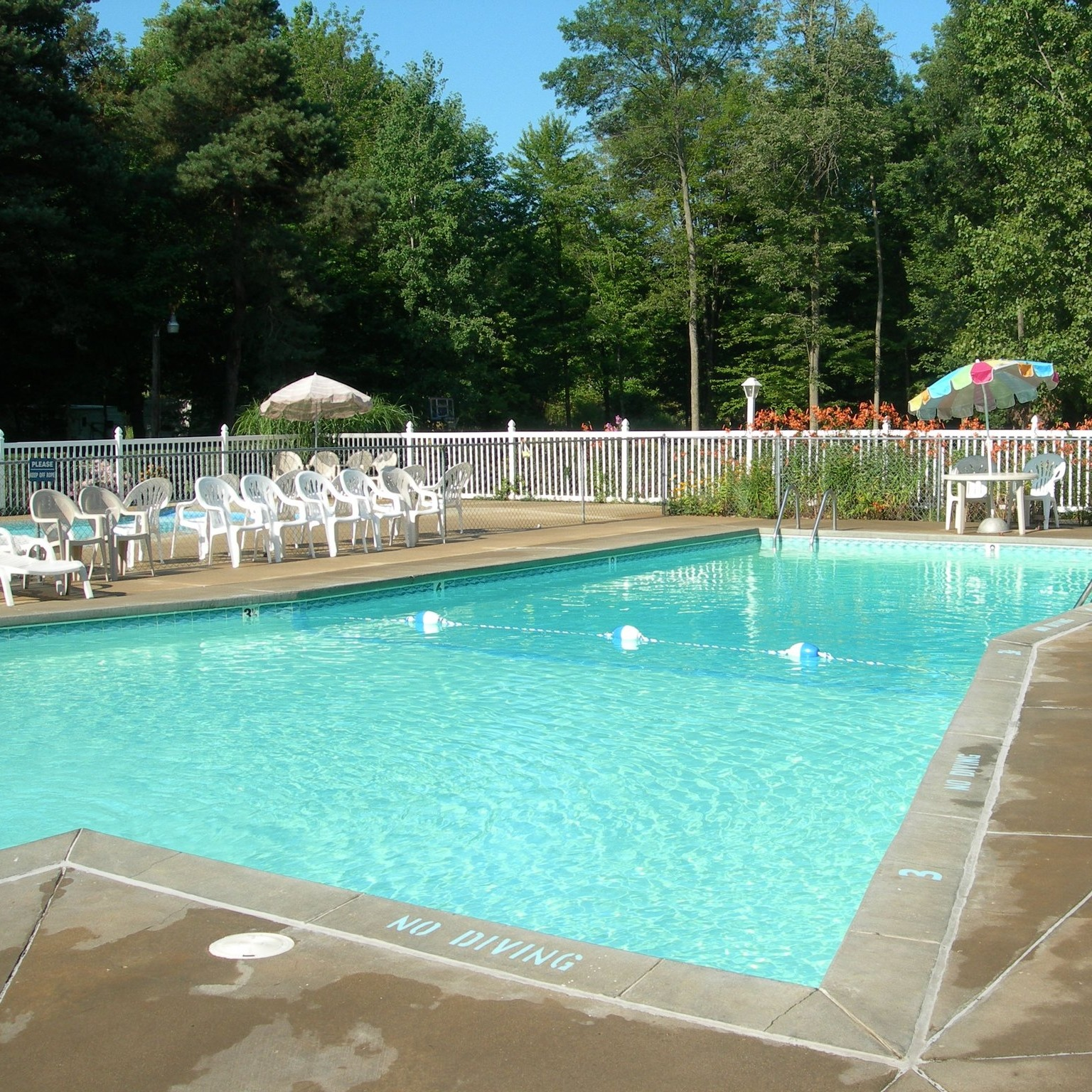 hungry horse campground pool