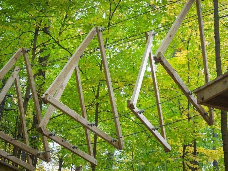 TreeRunner Adventure Park Rochester MI Zipline