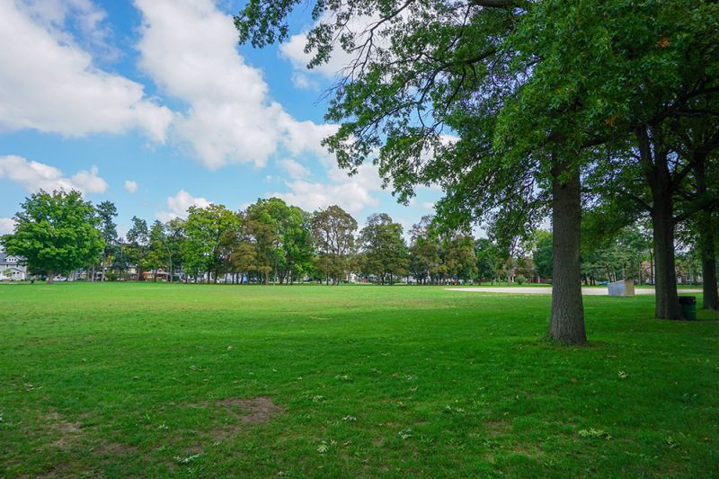 Use only for Garfield Park green space
