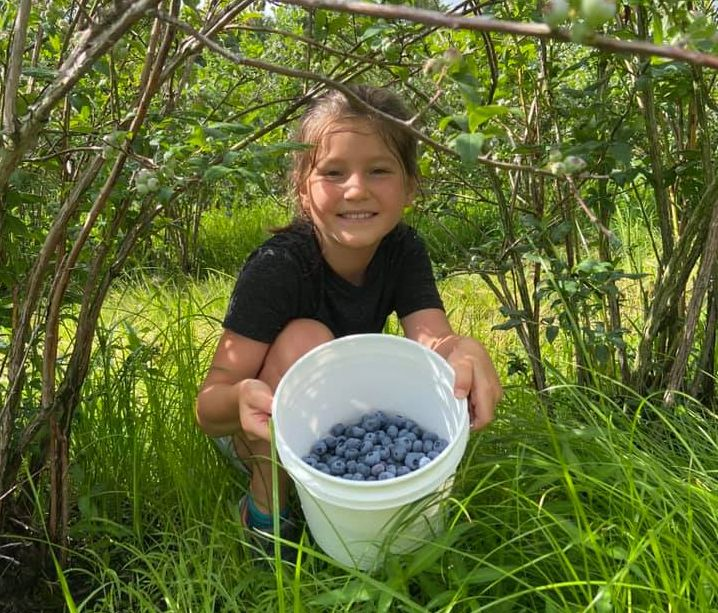 girl with pail of blueberries Dentler cropped
