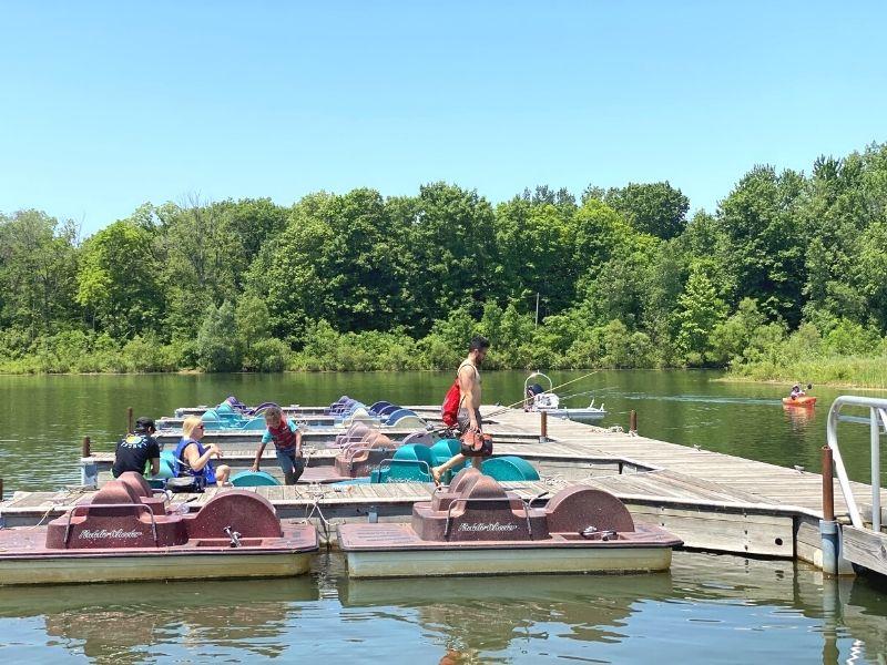 millennium park paddle boats