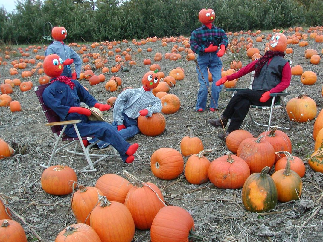 anderson and girls pumpkin patch