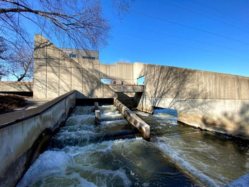 Grand Rapids Fish Ladder Park