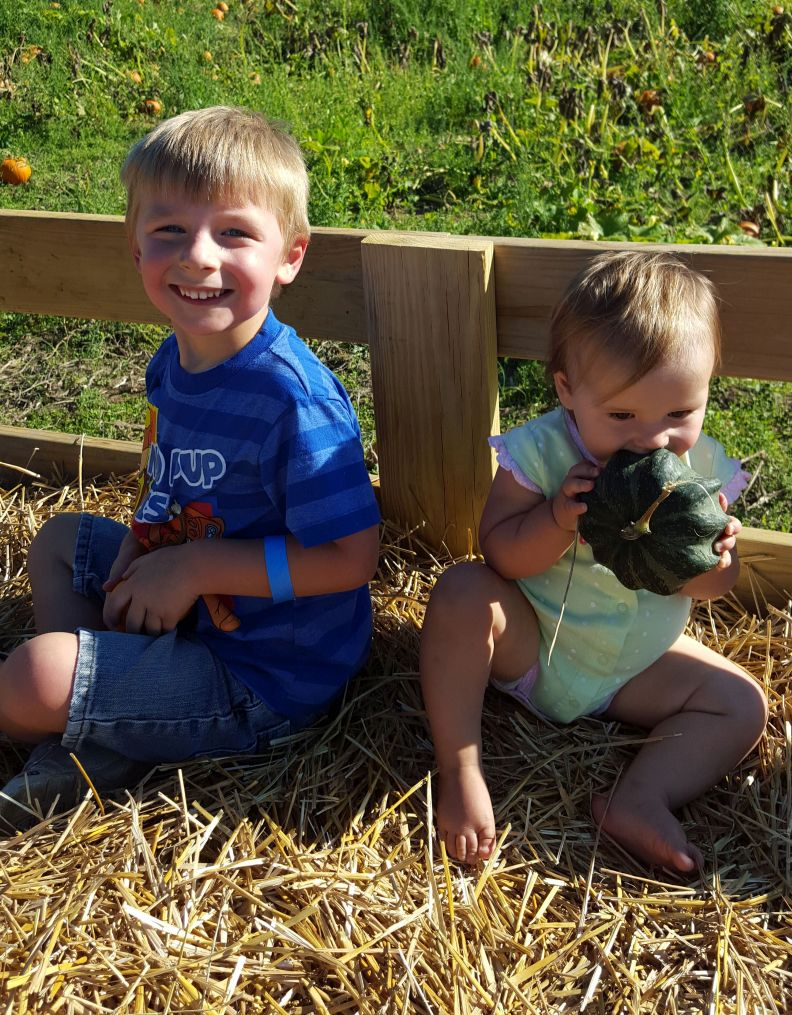 Post Family Farm kids on hayride with pumpkin patch background Rudd