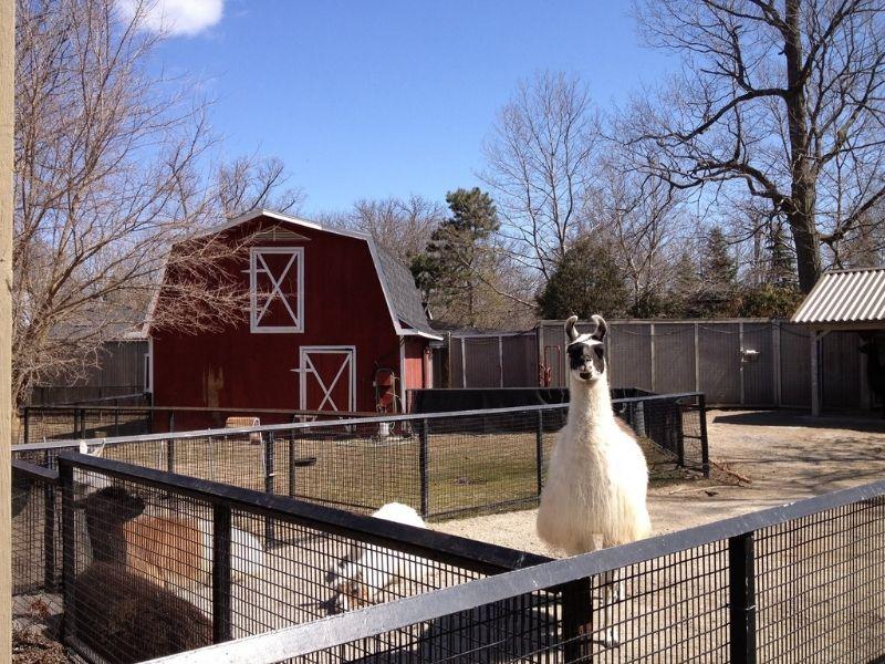 potter park zoo lansing